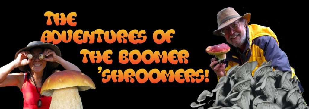 Adventure of the Boomer 'Shroomers!